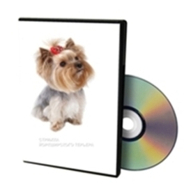 Dog Grooming Dvd Download Free